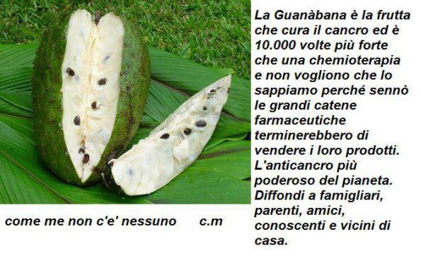 04giu-Guanabana