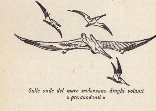 Papp-Pteranodonti